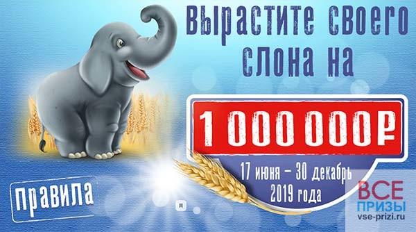 Пятерочка акция - вырасти своего слона на 1 000 000 рублей